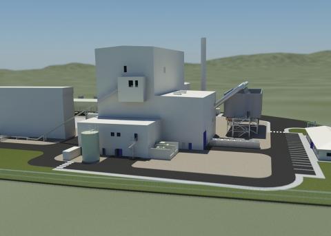 2010 LISAHALLY - Biomass Power Plant